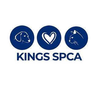 www.kingsspca.org