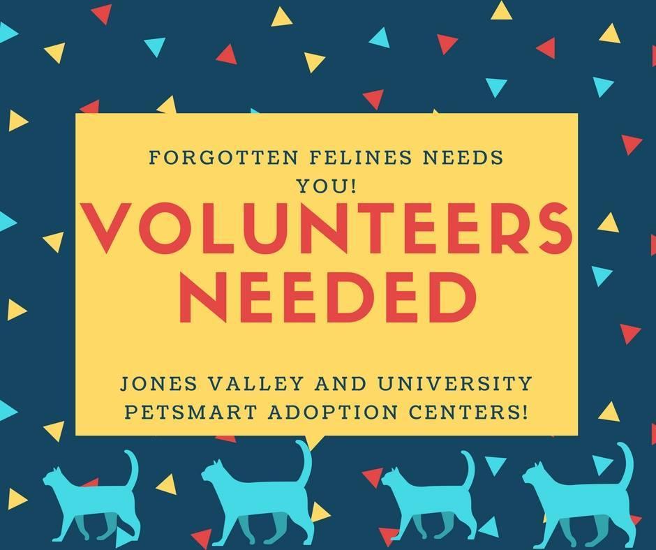 Volunteer!! info@ffhsv.org