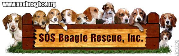 SOS Beagle Rescue-Alabama Chapter