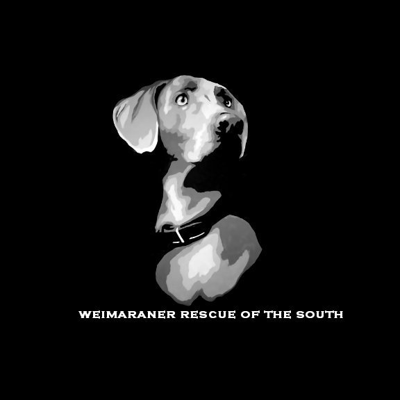 Weimaraner Rescue of the South