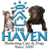 The Haven Logo 10x10