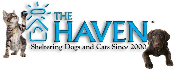 The Haven logo wide