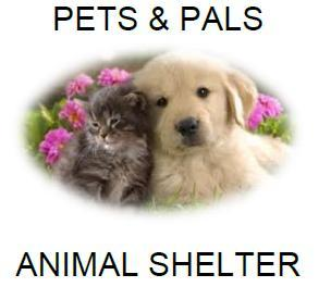 Pets For Adoption At Pets And Pals In Lathrop Ca Petfinder