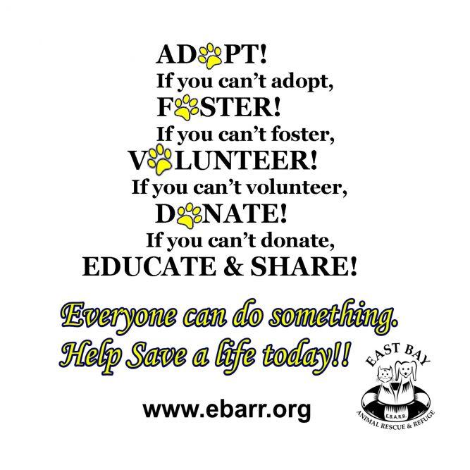 East Bay Animal Rescue & Refuge (EBARR)