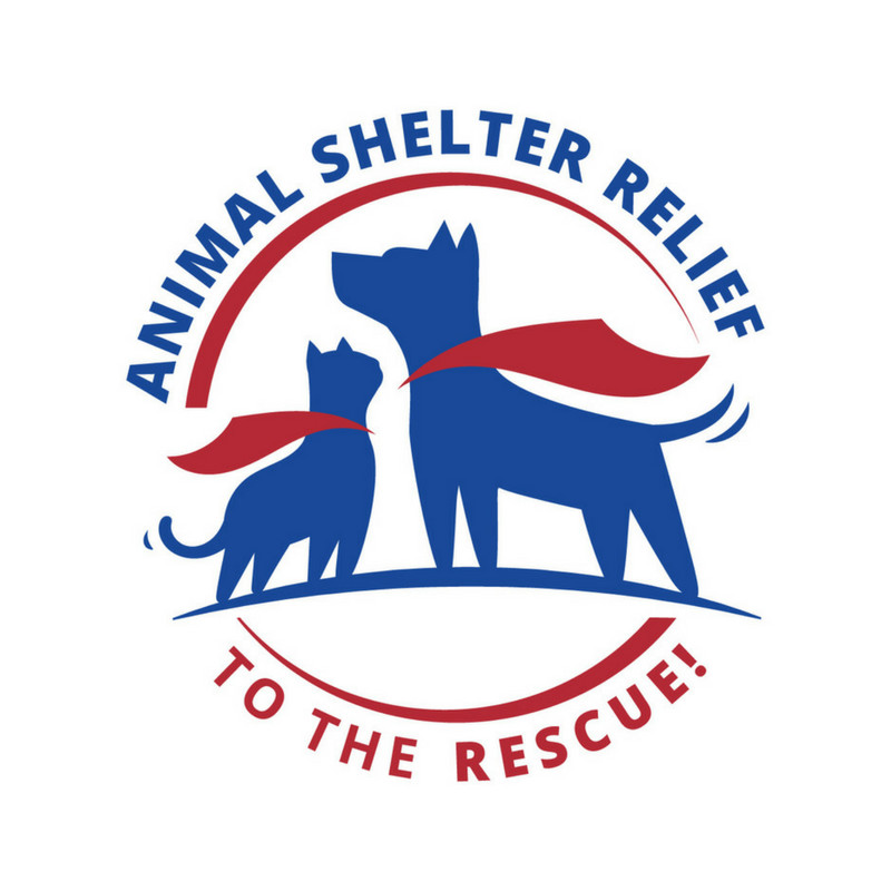 Pets for Adoption at Animal Shelter Relief Rescue, in Santa Cruz, CA |  Petfinder
