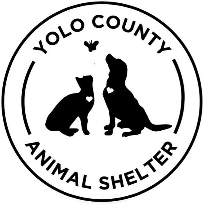 Yolo County Animal Services