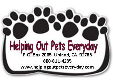 Helping Out Pets Everyday