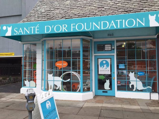 Sante D'Or Foundation