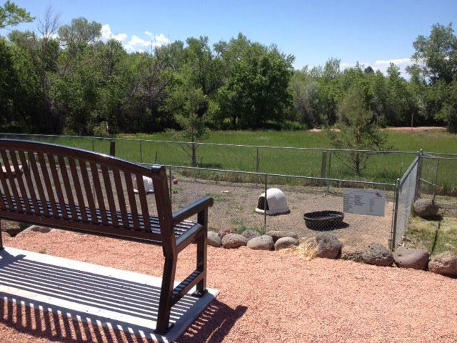 View of our play yard