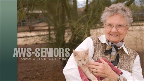 Senior Cats for Senior Citizens