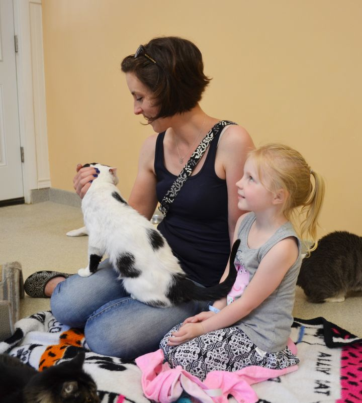 Open Adoption Events are Saturdays from 11am-3pm.