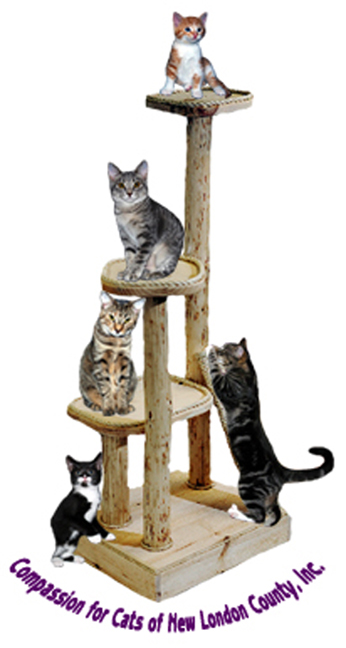 Compassion For Cats, New London County
