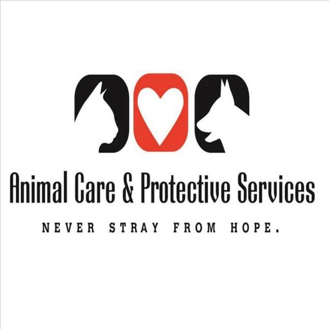 Animal Care & Protective Services