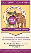 Pinellas County Animal Services