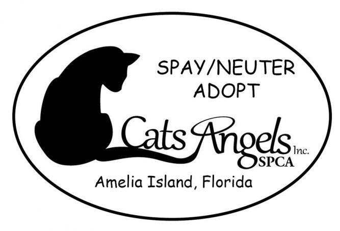 Cats Angels, Inc. SPCA