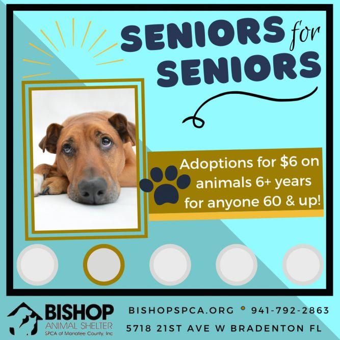 Bishop Animal Shelter SPCA of Manatee County