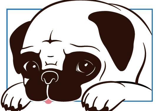 Pug Rescue of Florida, Inc.