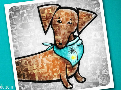 Pets For Adoption At Dachshund Rescue South Florida In Weston Fl Petfinder