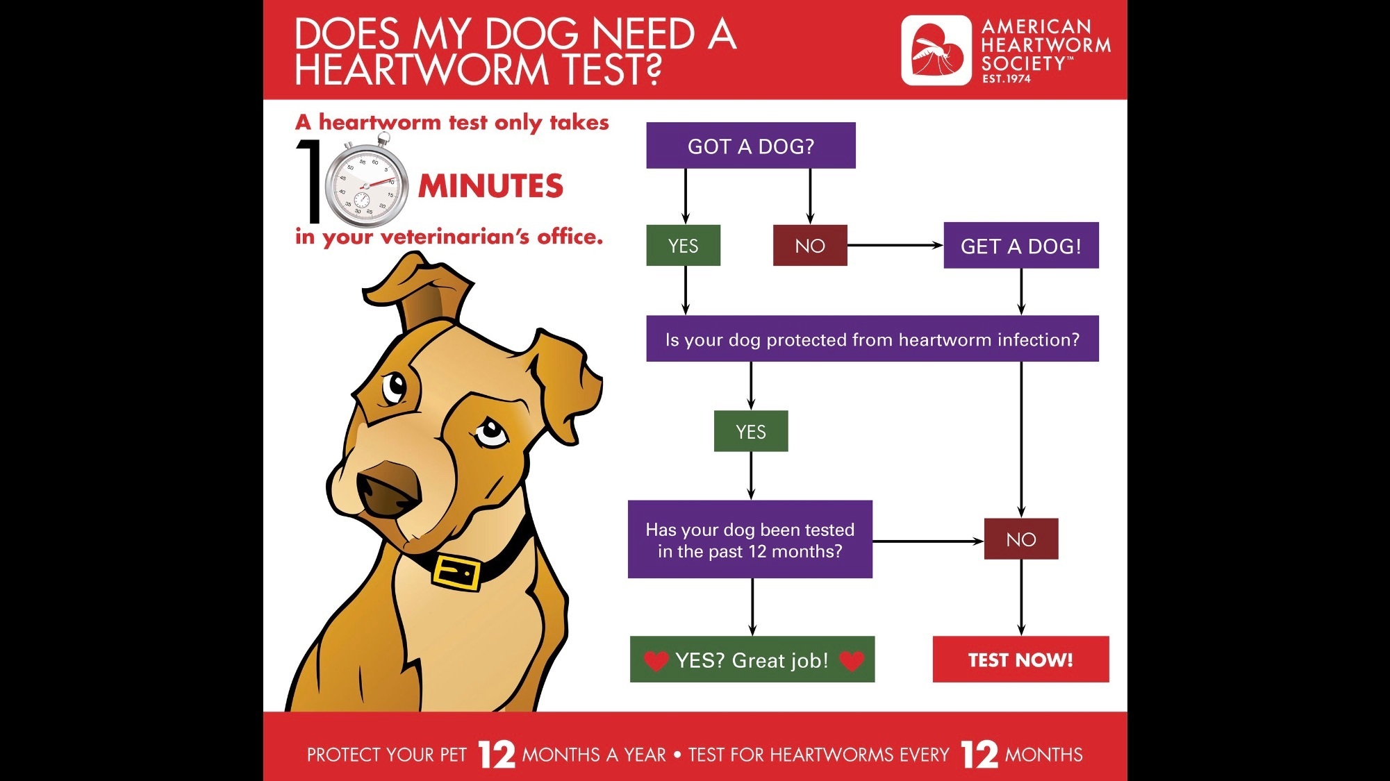 IS YOUR DOG SAFE.??