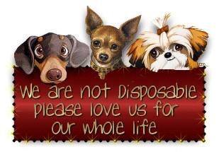 Animal Aid Humane Society
