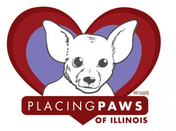 Placing Paws Of Illinois