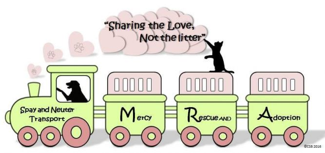 Mercy Rescue and Adoption