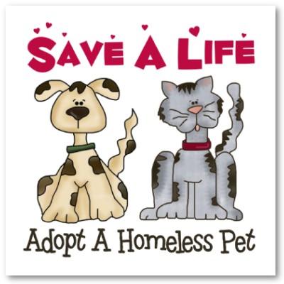 Hendricks County Animal Control Shelter