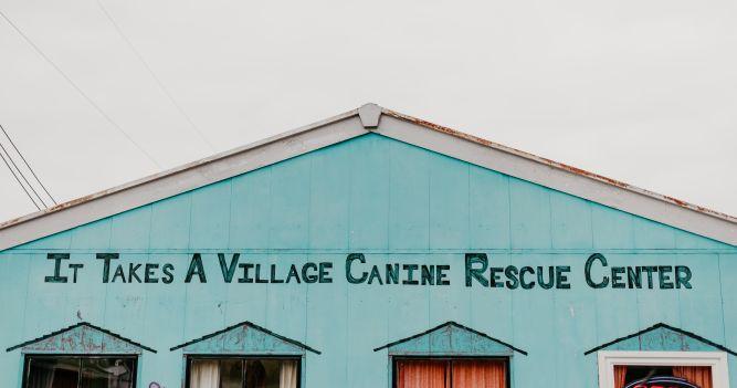 It Takes A Village No-Kill Rescue, Inc.