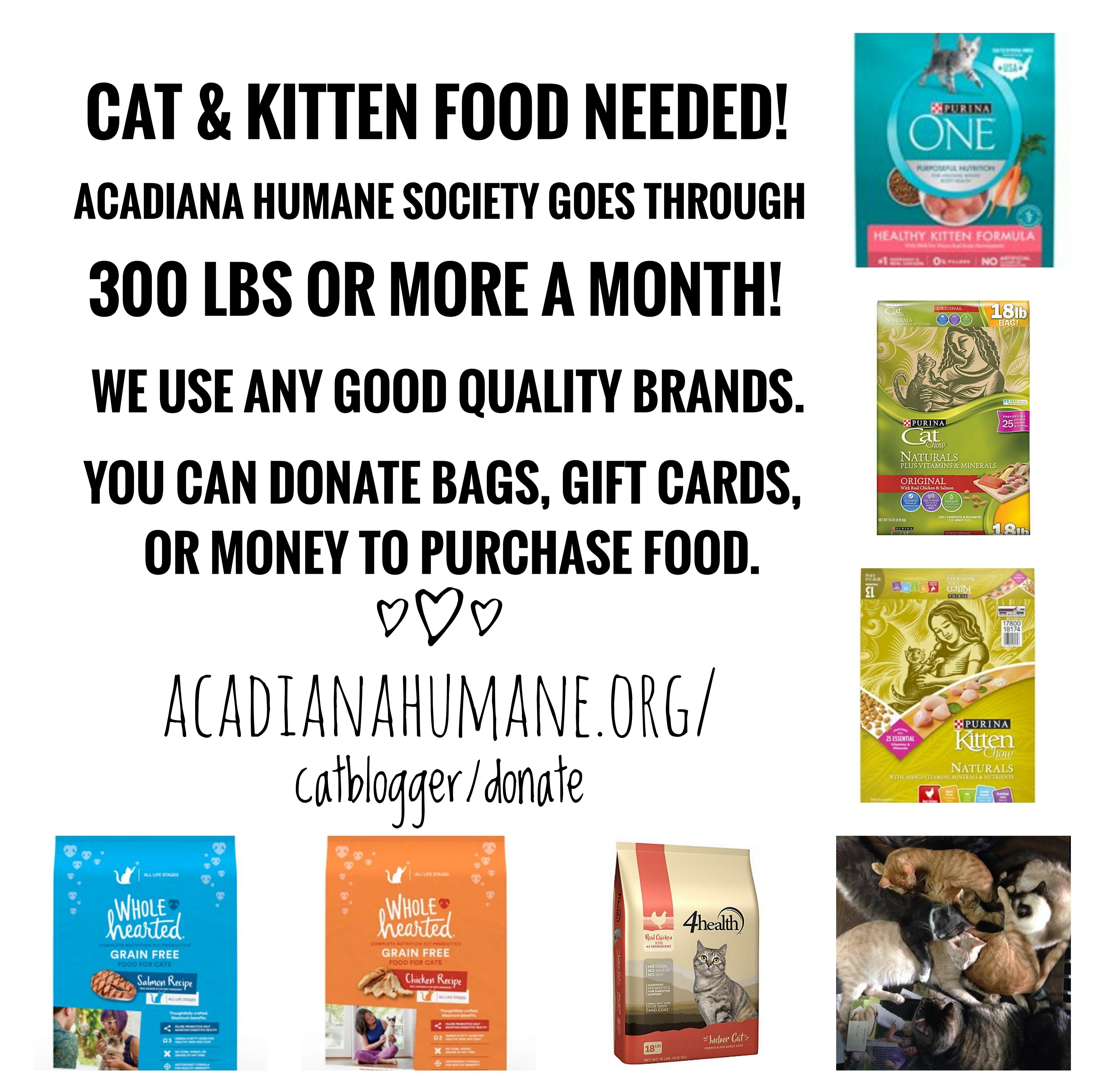 We need cat food please!
