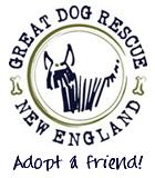 Pets for Adoption at Great Dog Rescue New England, in Andover, MA |  Petfinder