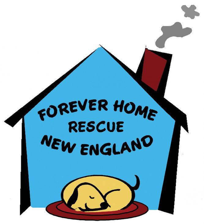 Forever Home Rescue New England