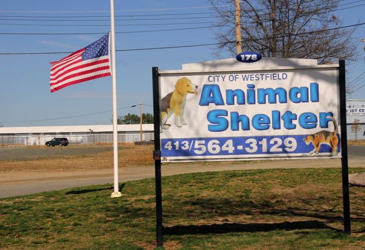 Shelter sign from the road