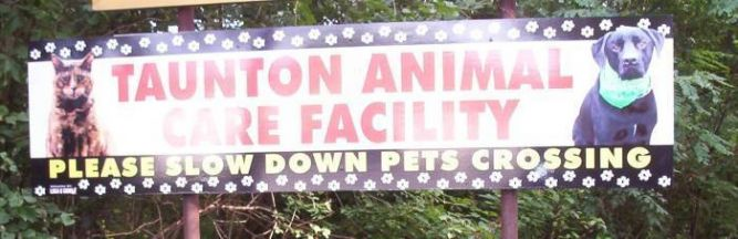 Taunton Animal Shelter