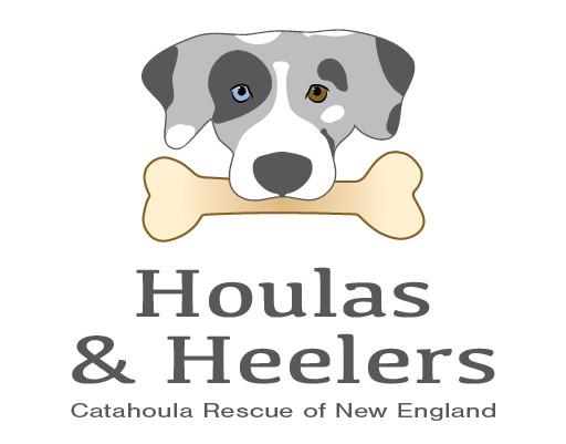 Catahoula Rescue of New England