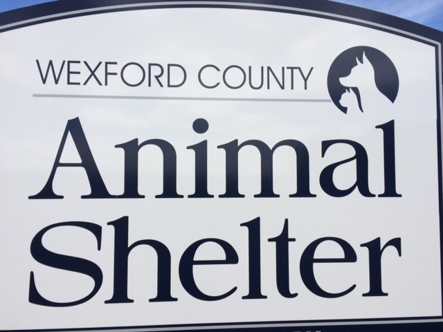 Wexford County Animal Shelter