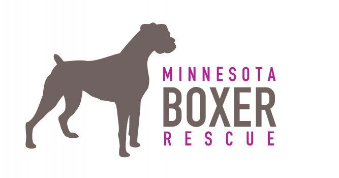 Minnesota Boxer Rescue