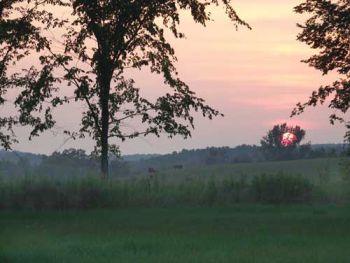 Sanctuary Sunset