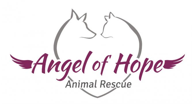 Angel of Hope Animal Rescue