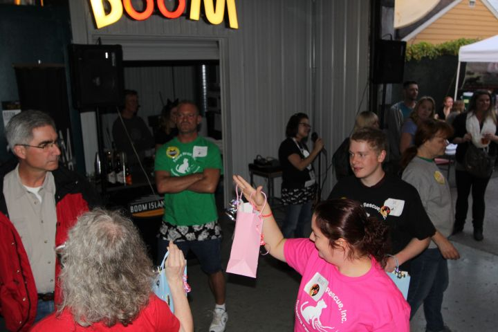 Pints & Purrs at Boom Island Brewing 2016