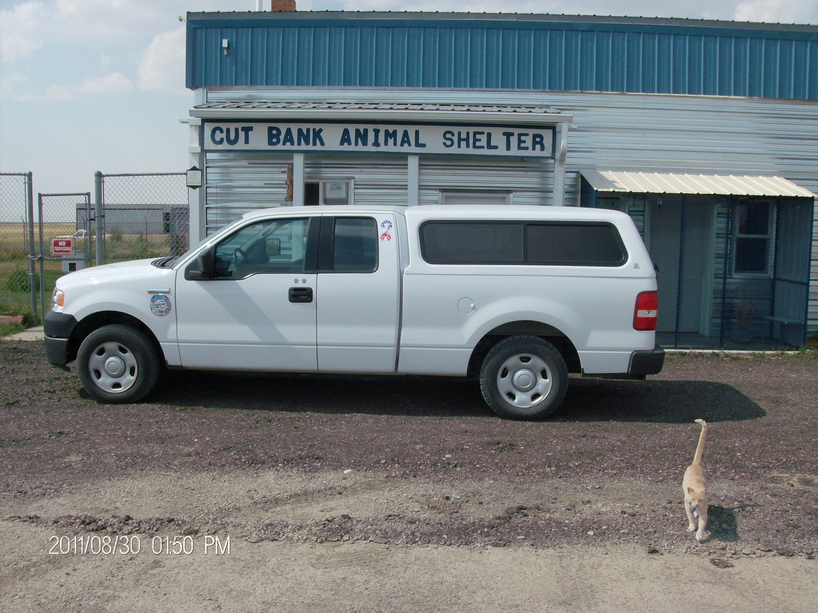 Welcome to Cut Bank Animal Shelter