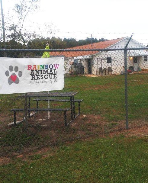 Rainbow Animal Rescue