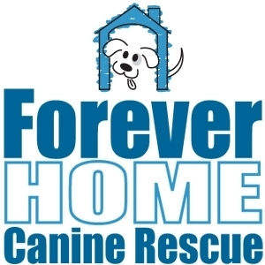 Forever Home Canine Rescue