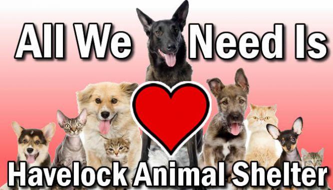 Havelock Animal Shelter