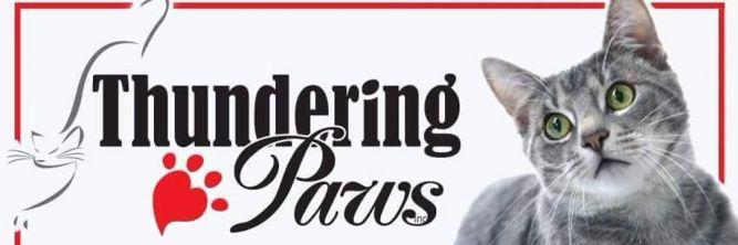 Thundering Paws Adoption Center Inc.