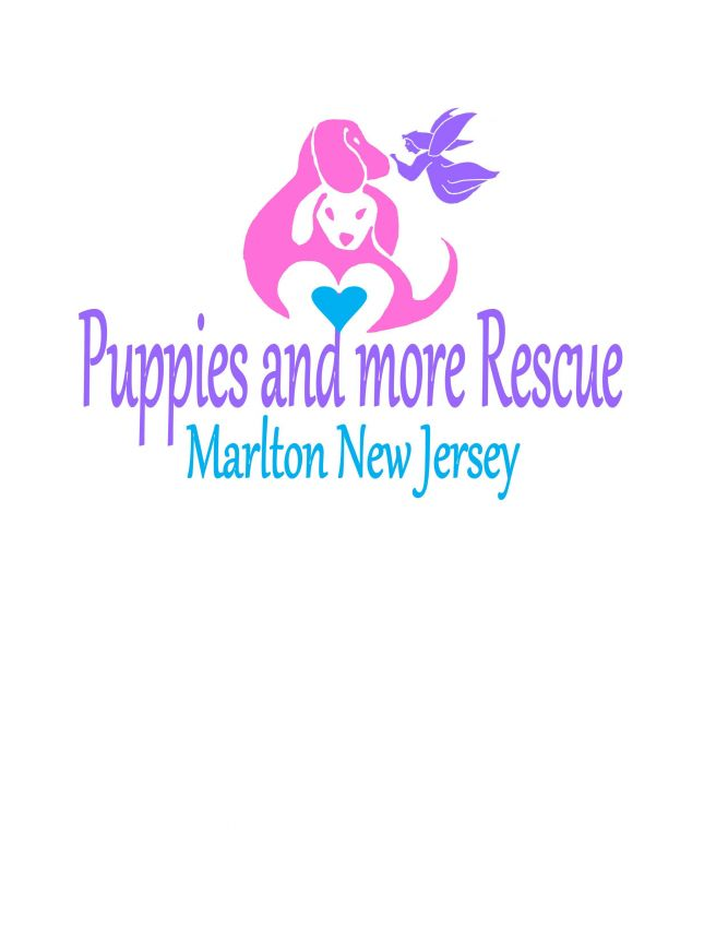 Puppies and More Rescue Adoption