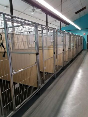 Our brand new beautiful dog kennels!