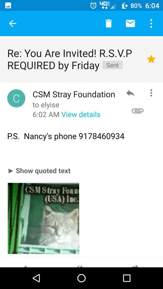 CSM Stray Foundation (USA) Inc.