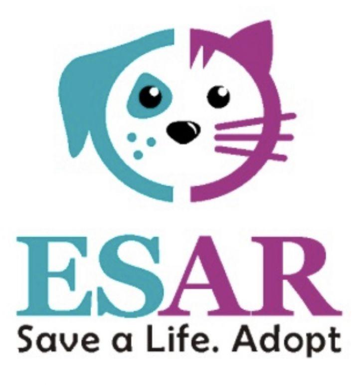 Save a life.  Adopt