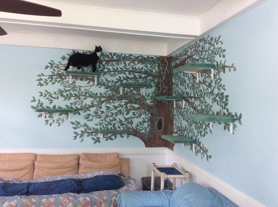 Free Roaming Cat Rooms