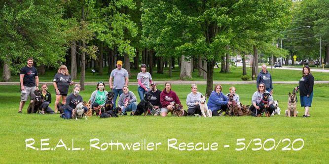 R.E.A.L. Rottweiler Rescue